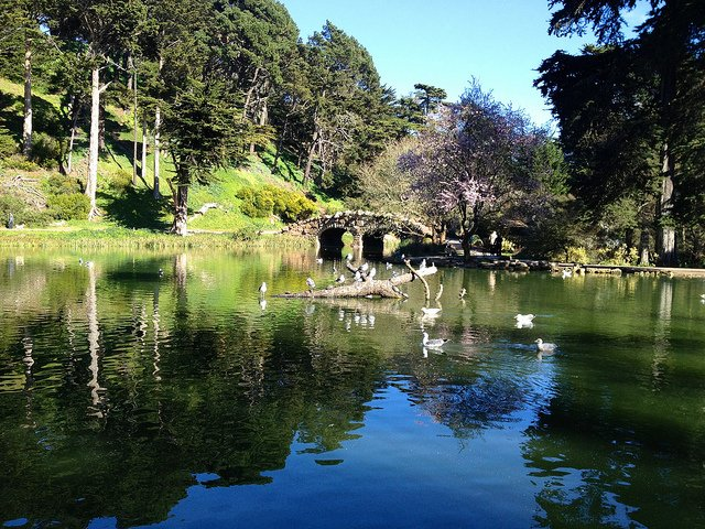Stow Lake, Golden Gate Park by: David McSpadden (CC)