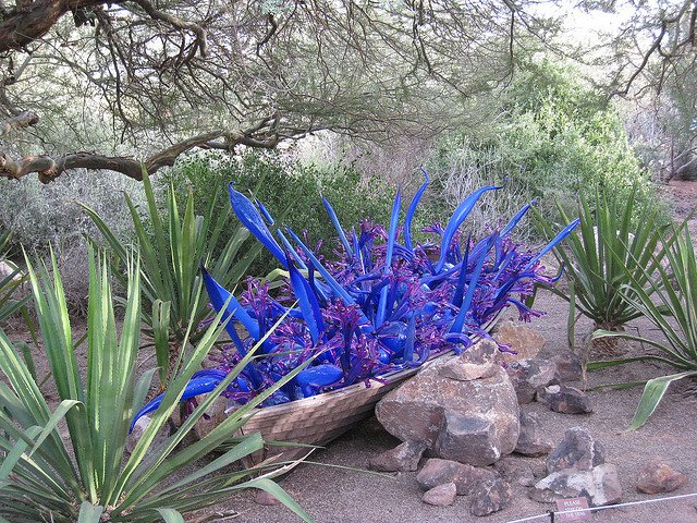 Chihuly at Desert Botanical Garden by: Dru Bloomfield (CC)
