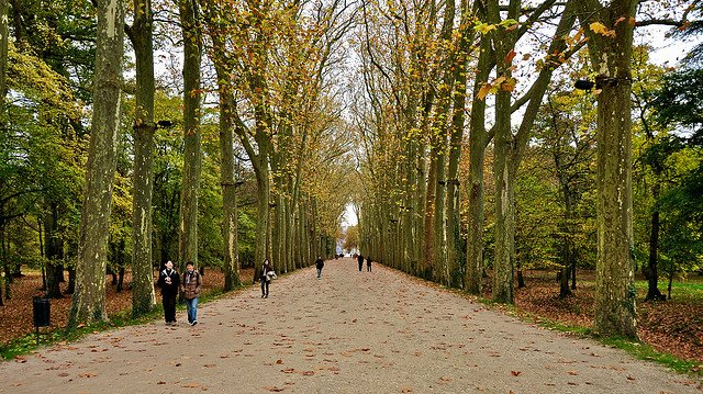 The Path to Chateau de Chenonceau by: Geoff Livingston (CC)