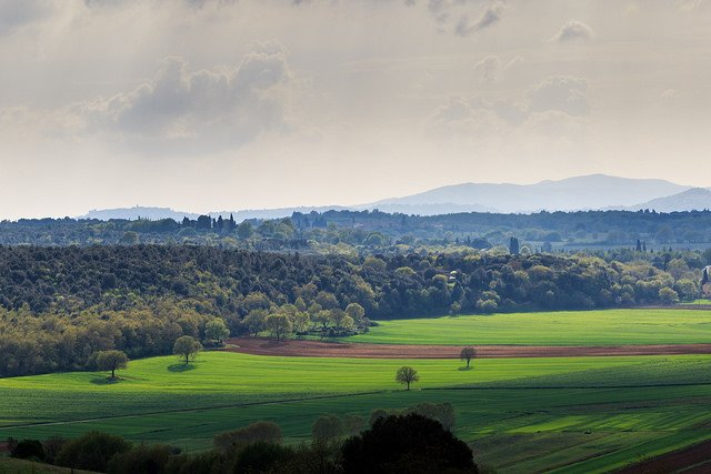 Landscape in Tuscany by: Salvatore Gerace (CC)
