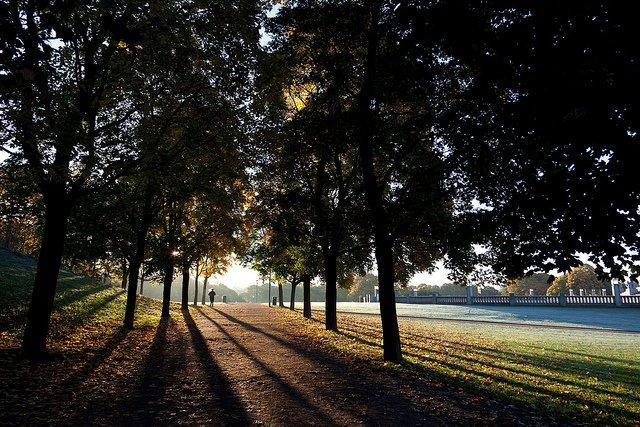 Autumn in Oslo by: Eirik Solheim (CC)