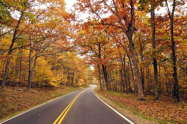 Stretching for 169 km (105 mi) along a mountain ridge and through colorful valleys below, Skyline Drive remains the park's marquee attraction. Image credit - Fall Color along Skyland Drive in Shenandoah National Park by: Stephen Little