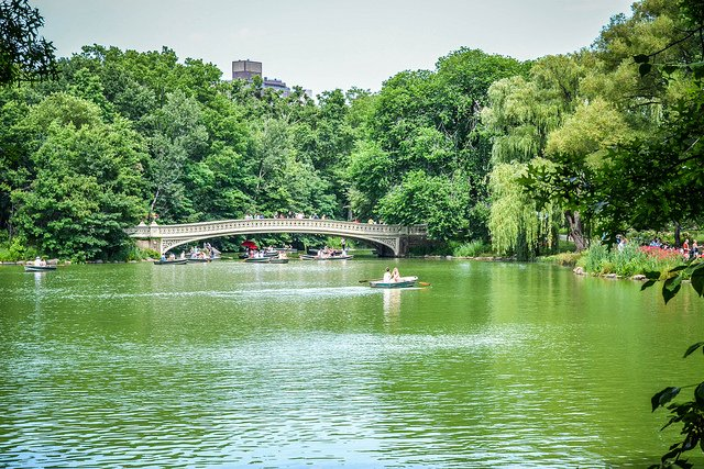 Central Park by: m01229 (CC)