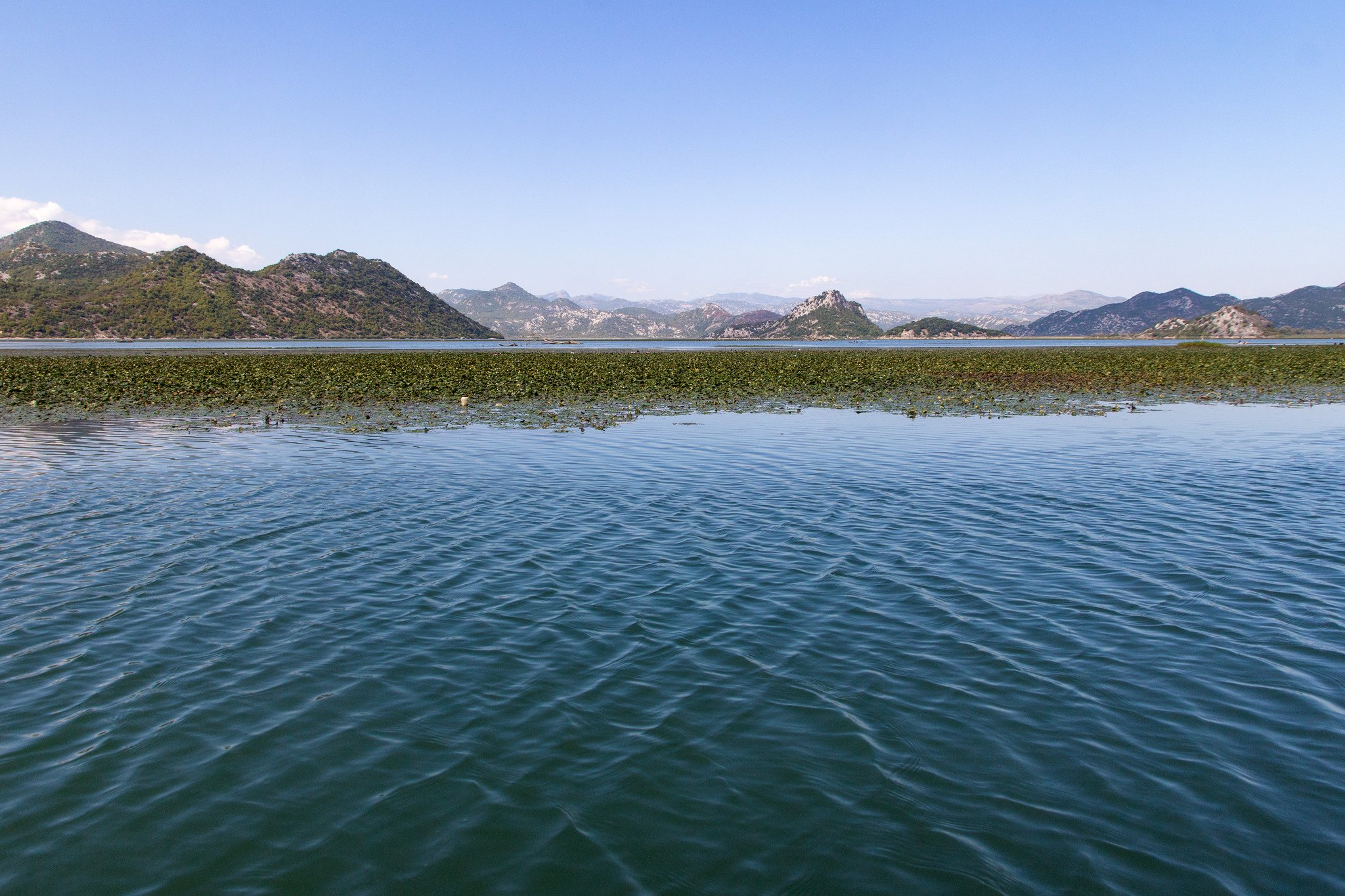 Lake Skadar by cat_collector (CC)