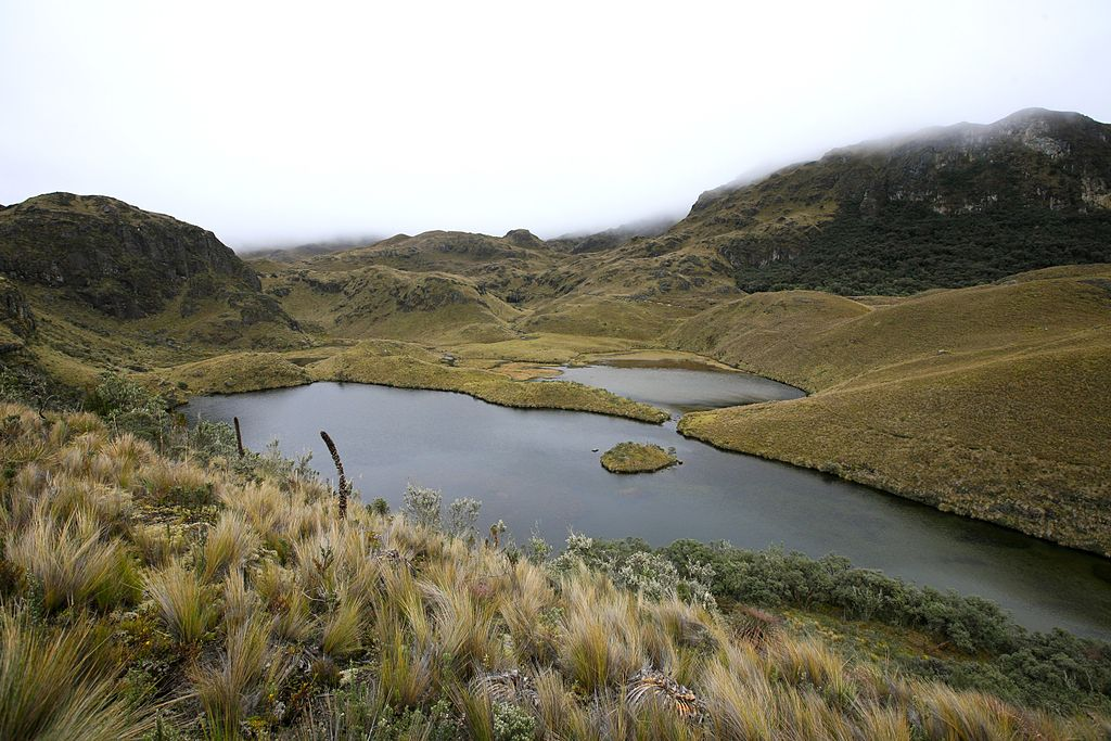 Cajas National Park, near Cuenca by Alex Proimos (CC)