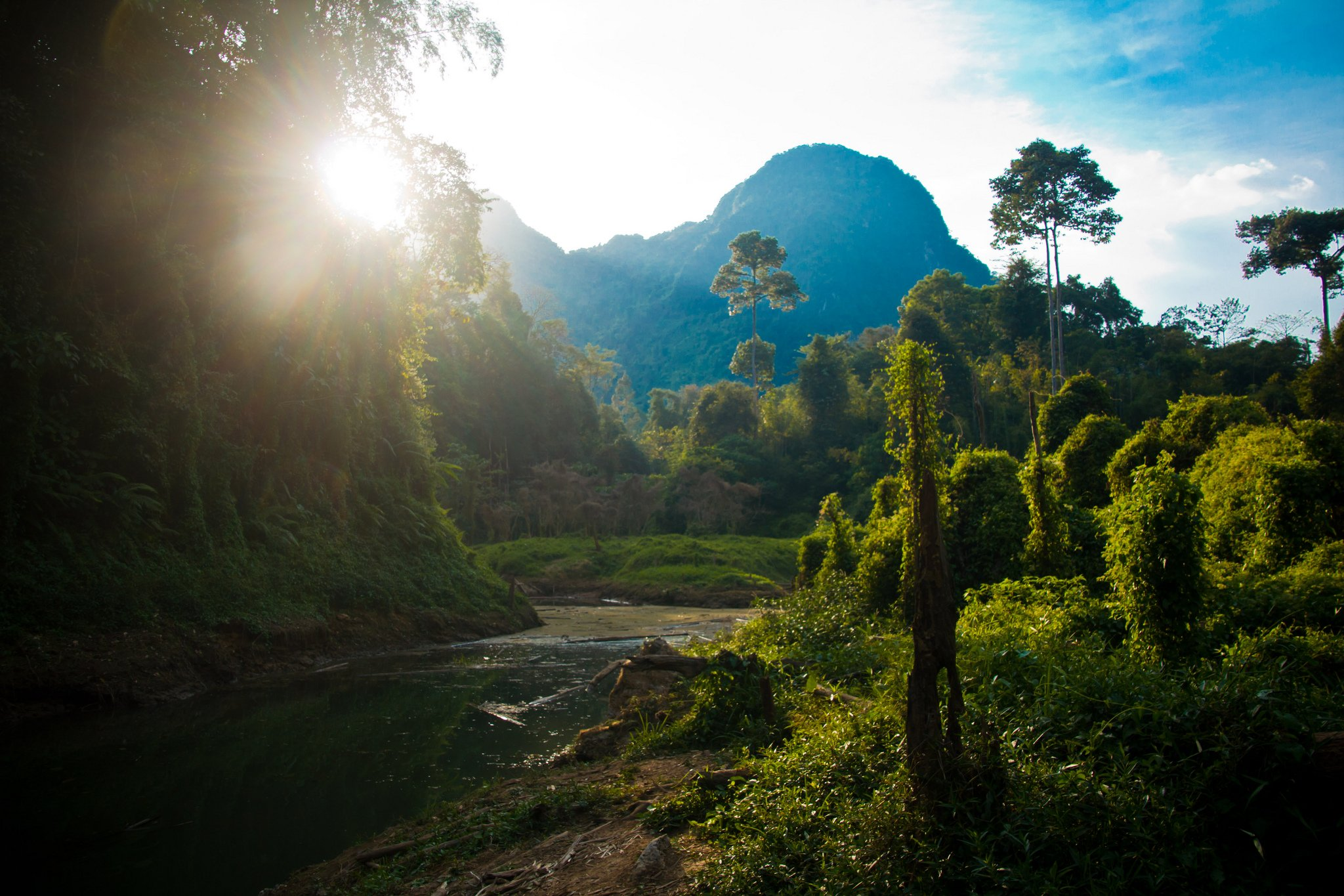 Khao Sok National Park by: Patty HO (CC)